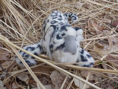 Stuffed Leopard
